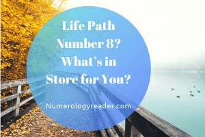 Life Path Number 12 - Numerology Reader